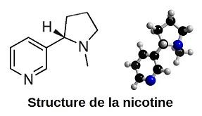 structure-de-la-nicotine